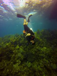 Yasmany Fuentes diving in Roatan, Honduras